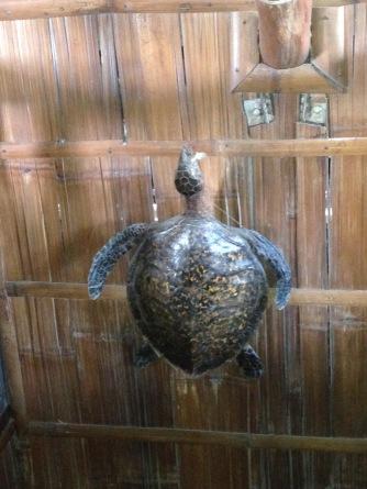 decorative turtle